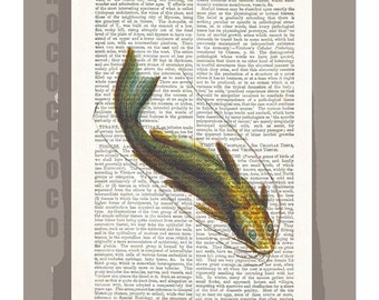 FISH1 -ARTWORK  printed on Repurposed Vintage Dictionary page -Upcycled Book Print