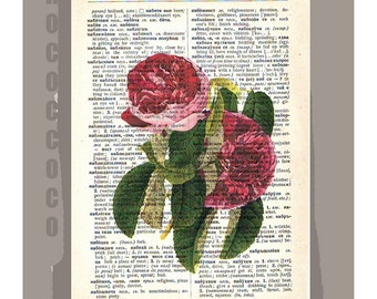 ROSES1 Artwork on a page from vintage Dictionary -Upcycled Book Print