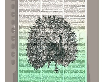 PEACOCK-ORIGINAL ARTWORK printed on Repurposed Vintage Dictionary page 8x10 -Upcycled Book Print
