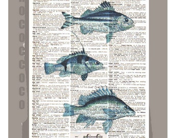 Blue FISH - ARTWORK  printed on Repurposed Vintage Dictionary page 8 x11 -Upcycled Book Print