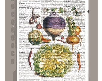 Antique French VEGETABLES 3 Artwork on a page from vintage Dictionary 8 x 11 -Upcycled Book Print