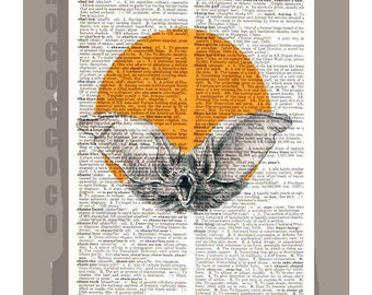 Bat - ORIGINAL ARTWORK on Upcycled Vintage Dictionary page -Upcycled Book Print