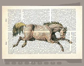 White HORSE 2-ARTWORK printed on Repurposed Vintage Dictionary page -Upcycled Book Print