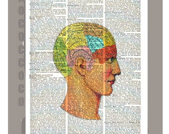 The Brain2 - 1898 Antique ARTWORK printed on Repurposed Vintage Dictionary page 8x10 -Upcycled Book Print