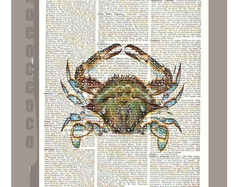 CRAB -ARTWORK  printed on Repurposed Vintage Dictionary page 8 x 10 -Upcycled Book Print