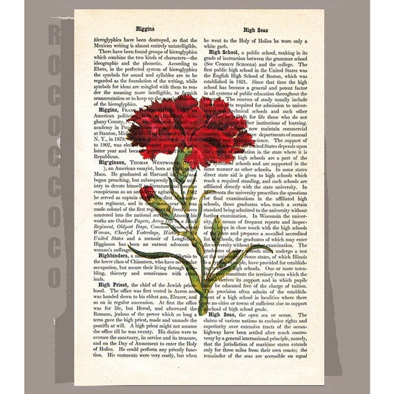 Vintage CARNATION Artwork on a page from vintage Dictionary -Upcycled Book Print