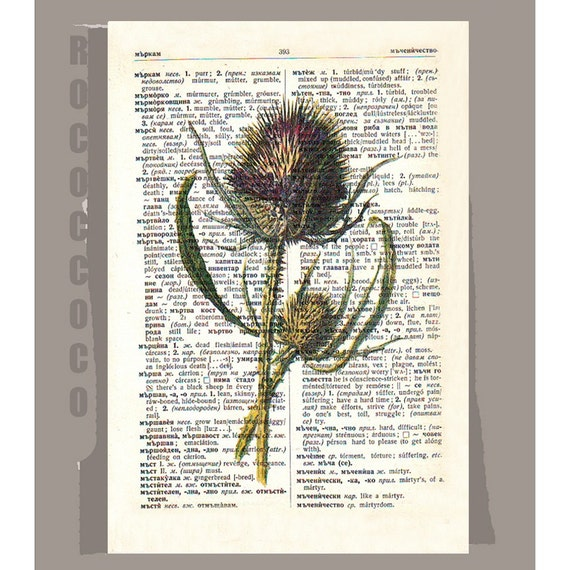 THISTLE3 Artwork on a page from vintage Dictionary -Upcycled Book Print