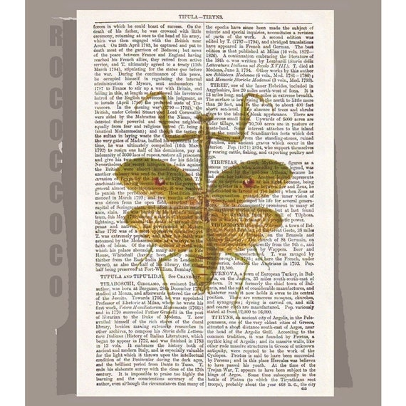 INSECT  -ARTWORK  printed on Repurposed Vintage Dictionary page -Upcycled Book Print