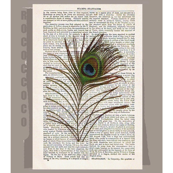 PEACOCK Feather - ORIGINAL Artwork printed on Repurposed Vintage Dictionary page -Upcycled Book Print