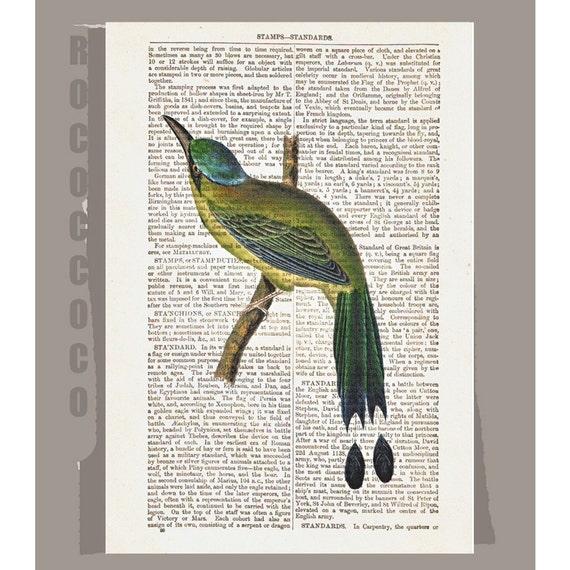 HUMMINGBIRD - ARTWORK printed on Repurposed Vintage Dictionary page 8x10 -Upcycled Book Print