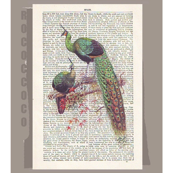 PEACOCK - ARTWORK printed on Repurposed Vintage Dictionary page -Upcycled Book Print