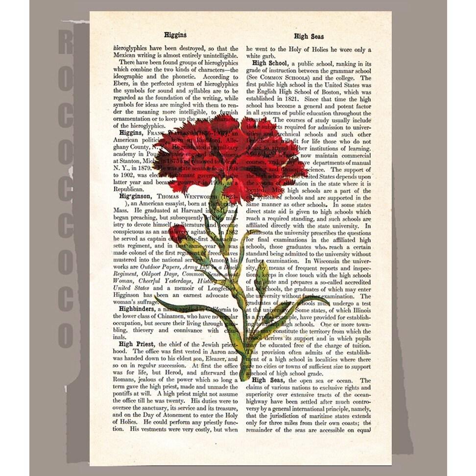 Vintage Carnation 5