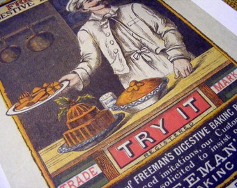 19th Century Freemans Digestive Baking Powder, c. 1881 Reproduction Print from Curious London