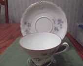 Handpainted Herman Ohme cup and saucer from Silesia Germany circa 1892-1930's-  274