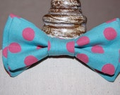 Boys Bow Tie - Polka Dots - Blue with Rasberry Pink Polka Dots