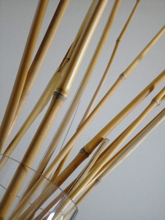 Vase With Bamboo Sticks ~ Items similar to natural bamboo variety reed stalk eco