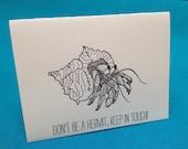 Hermit Crab: Sea Creature Greeting Cards