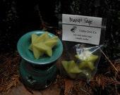 mango sage candle melts
