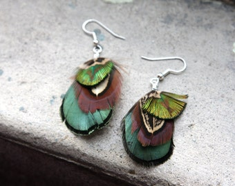 Peacock and Pheasant Plumage Feather Earrings
