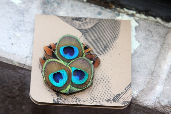 Vibrant Peacock and Pheasant Feathers Brooch or Boutineer