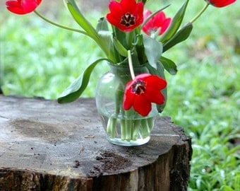 Red Tulips-  fine art photography - Red tulips in a glass vase sitting on top of a tree stump with tin buckets.  8x12