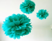 Paper pompon // Pompon en papier (S)
