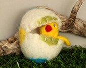 Easter Chick in the Egg