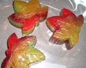 Autumn Apple Scented Maple Leaf Soap  - Vegan guest bath decorative multi