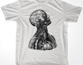 Neck muscles anatomy vintage men & ladies t-shirt (id5511)