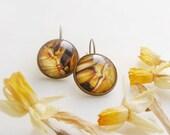 Mustard yellow earrings, modern glass dome earrings, small leverback earrings