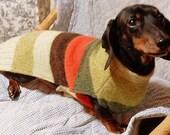 Warm Weenies Shetland Sweater for Dachshunds