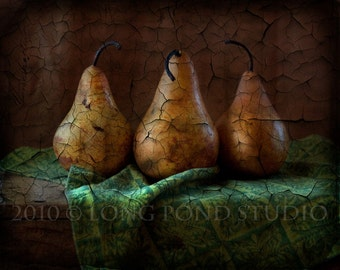 Pears and Paint, 8x10 digitally created photograph
