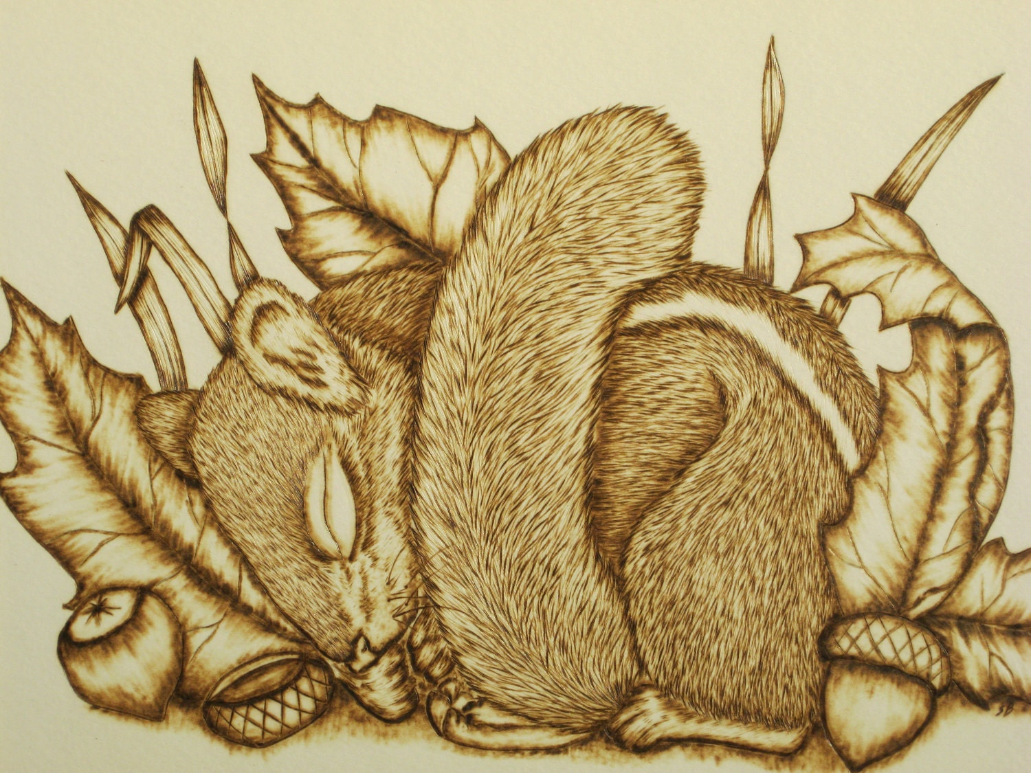 Sleeping Chippy Pyrography Art Work