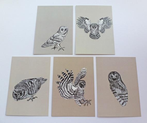 Owl Postcards Set of Five