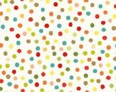 SALE Knock Knock White Multi Dots by Dana Brooks for Henry Glass