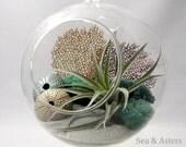 Silver Sea Terrarium - Extra Large Globe