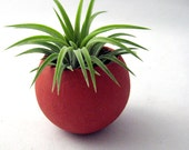 Mini Air Plant Container Pod - Rustic Orange Planter // Home and Garden // Gifts under 20
