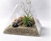 Peach Pyrite Pyramid Terrarium // Air Plant Terrarium
