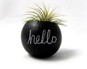 Air Plant Mini Container Pod - Hello Chalkboard // Black // Home Decor