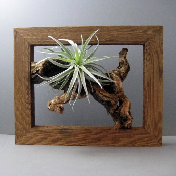 3d Picture Frame Ideas