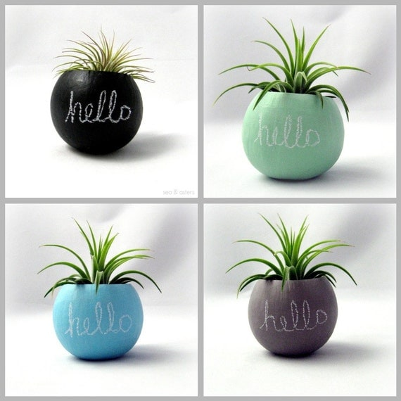 Air Plant Container Pod // Hello Chalkboard // Planter- Choose Your Color // Home and Garden