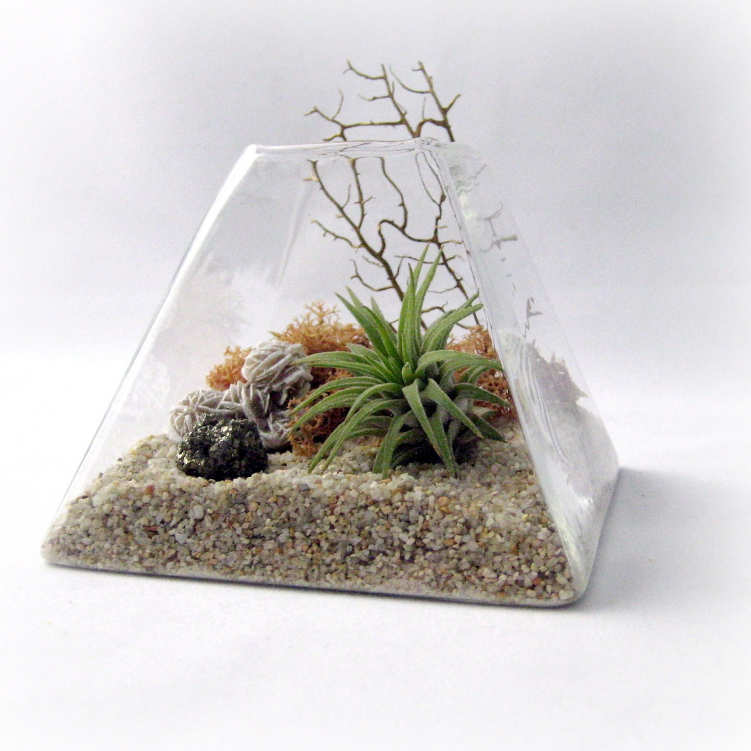 peach pyrite pyramid terrarium air plant terrarium by seaandasters etsy. Black Bedroom Furniture Sets. Home Design Ideas