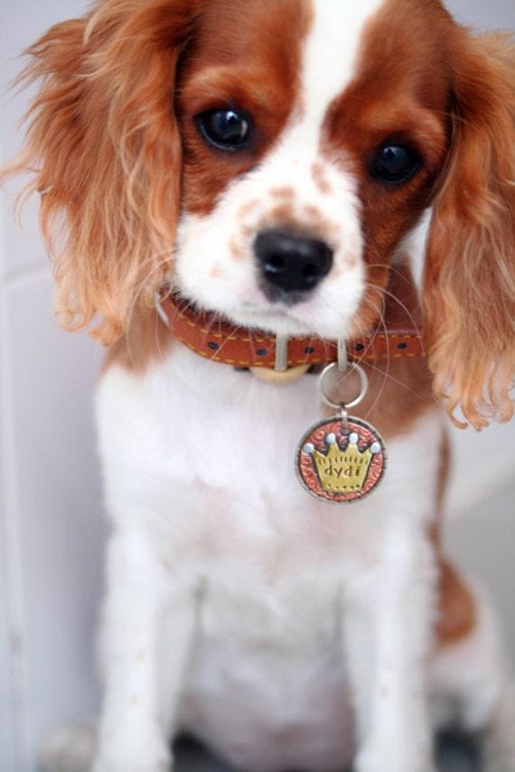 Small To Medium Dog Id Tag Crown Pet Id Tag