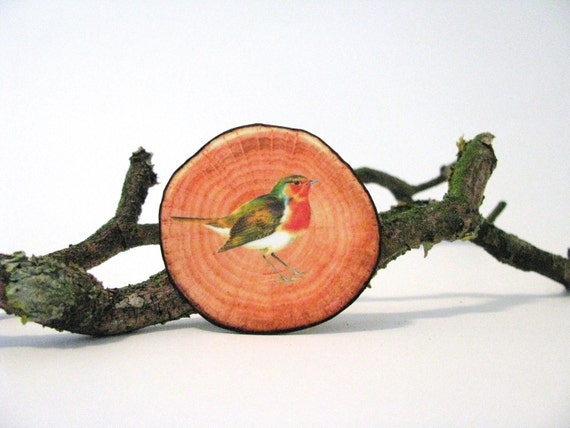 fake woodslice and red robin print brooch woodlands series