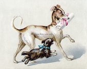 Terrier and Greyhound w Scroll Repro Greeting Card