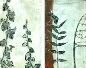 ooak monoprints botanical study series of six