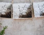 art print etchings on handmade paper