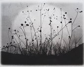 Moonrise, Charmed Meadow, etching on handmade paper