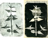 pair of Botanical Silhouettes on Vintage Dictionary Sheets and Rice paper