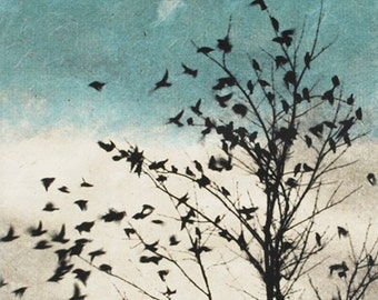 Art print , bird print, February Visit, Doves Fly Away